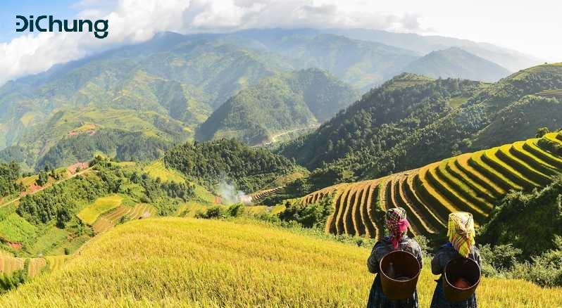 Tìm xe Hà Nội Sapa đi Sapa ngắm cảnh đẹp